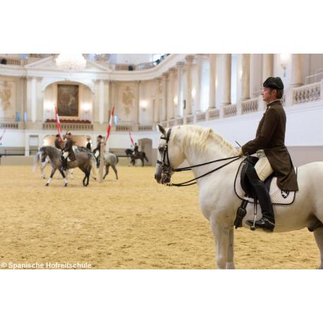 Combined Ticket: La Scuola d'Equitazione Spagnola e Tesoro Imperiale (Hofburg), Vienna: 2017