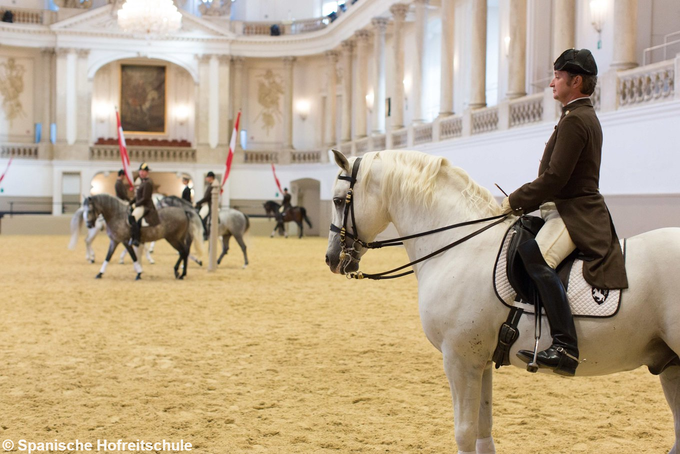 Combined Ticket: Spanish Riding School Morning exercise & Imperial Treasury Vienna (Hofburg)