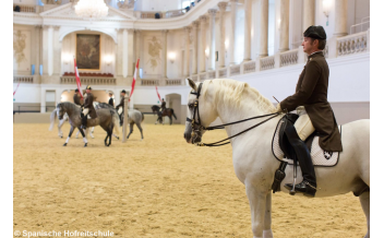 Morning Exercise, The Spanish Riding School, Vienna: 2017