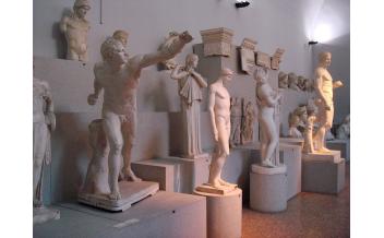 Museo Civico Arqueológico, Bolonia: Todo el año