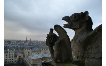 Собор Парижской Богоматери (Cathédrale Notre-Dame de Paris), Париж: Круглый год