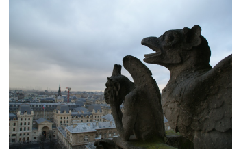 The Notre Dame Cathedral, Paris: All year
