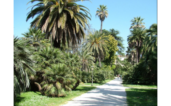 Botanical Garden, Rome: All year