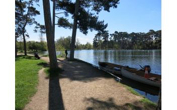 Bois de Boulogne, Paris: All Year