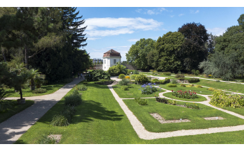 Botanical Garden of the University of Vienna: All year