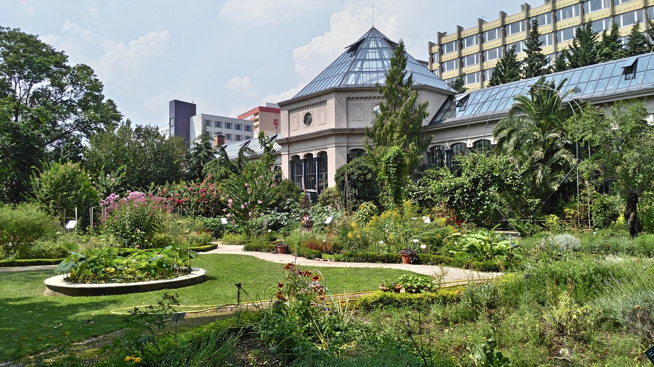 Jardin des plantes paris all year for Jardin plantes paris