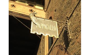 Pappagallo, Restaurant, Bologna