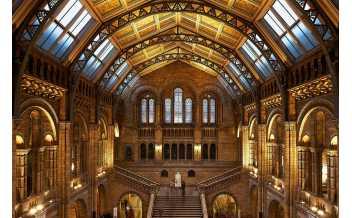 Музей естествознания (Natural History Museum), Лондон: Круглый год