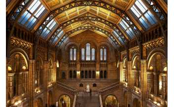 Museo de Historia Natural, Londres: Todo el año