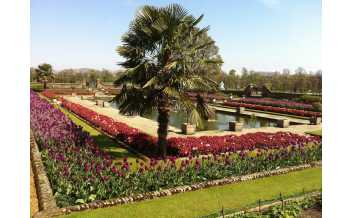 Kensington Palace, London: All Year