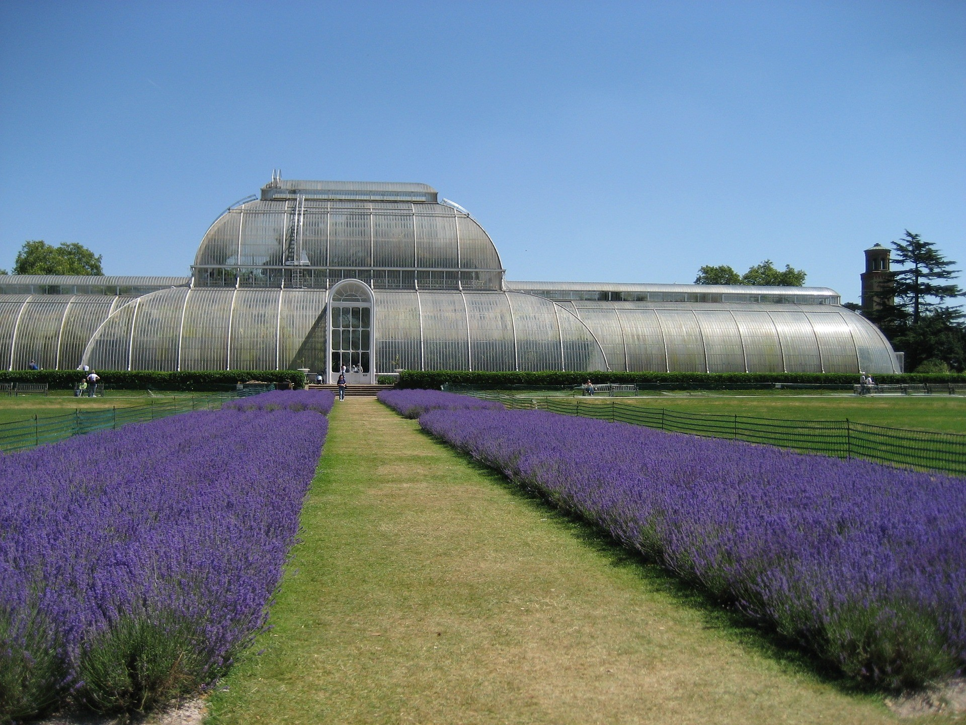 Royal Botanic Kew Gardens, London