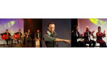 加泰罗尼亚音乐厅指定表演团弗罗门戈表演