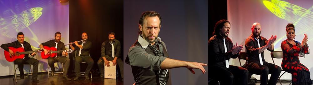 Flamenco show, Arte Flamenco, Barcelona: All year