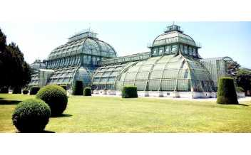 Palm House, Vienna: All Year