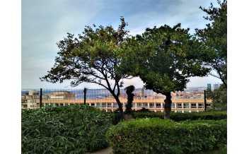 Jardin de la Colline Puget, Marseille: All Year