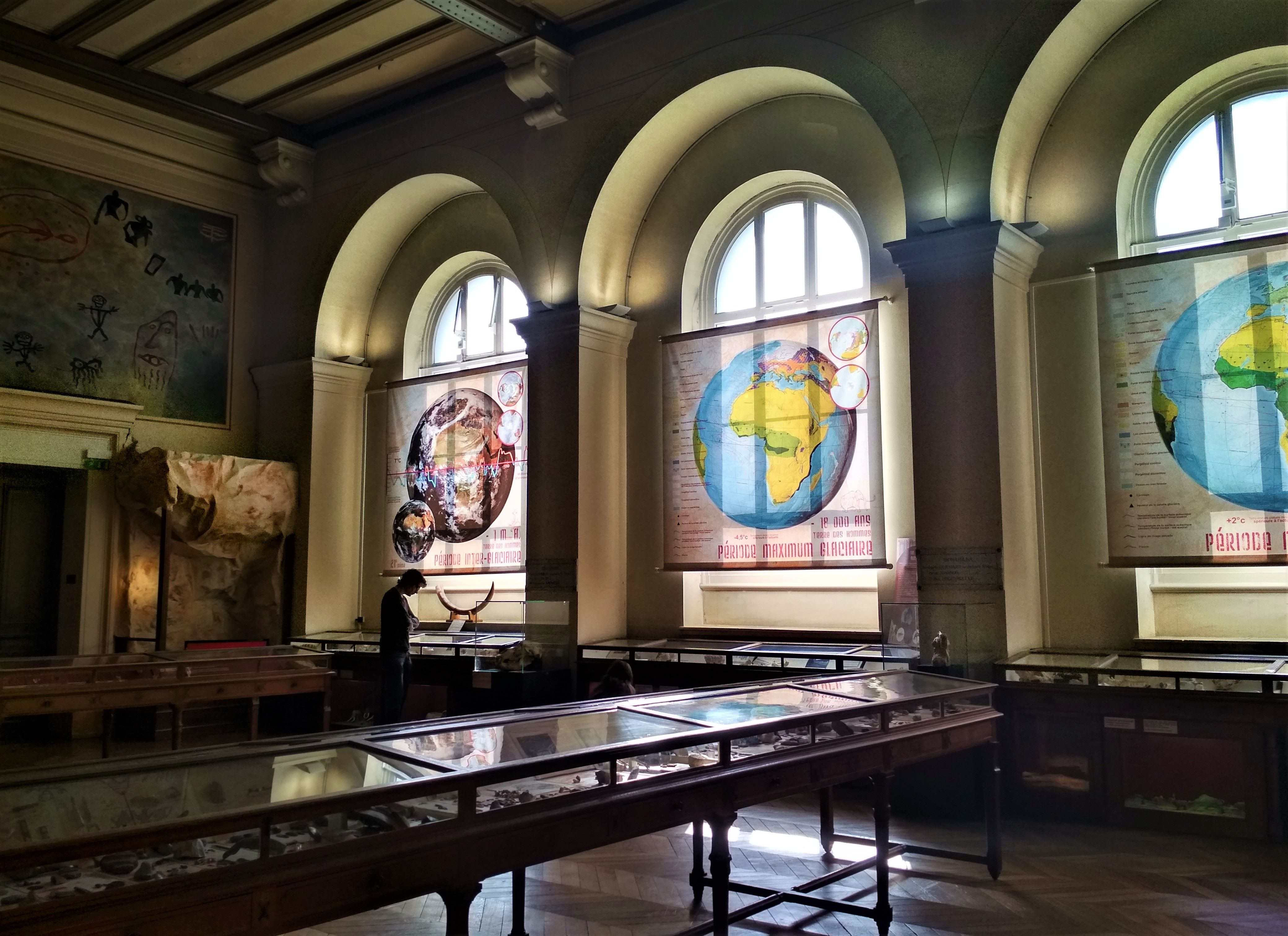 Muséum d'Histoire Naturelle, Marseille: All Year