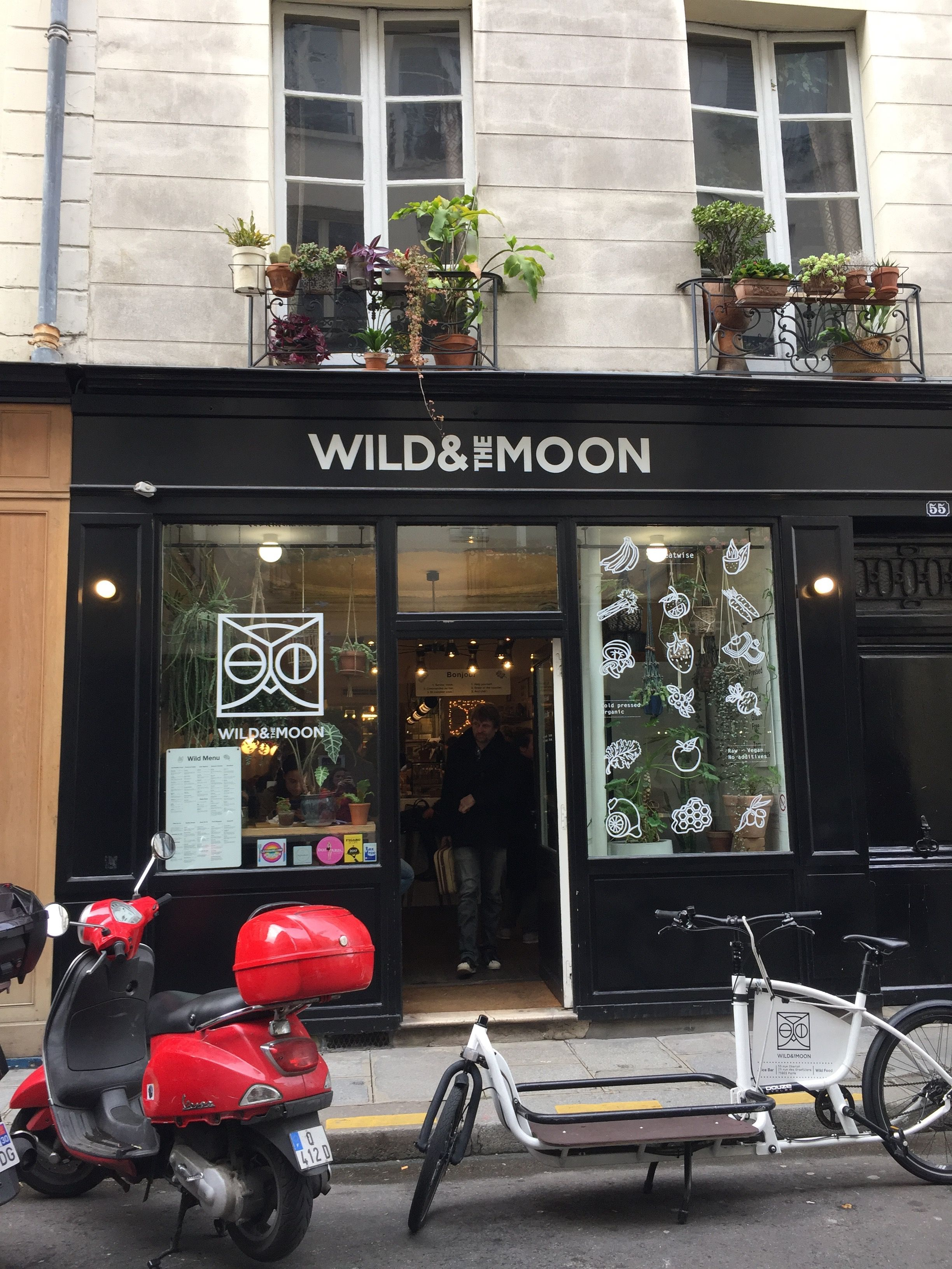 Wild & the Moon, Paris, All  Year