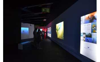 Oceans, the Last Wild Territory, Exhibition, Museu Blau, Barcelona: 3 November 2017-14 September 2018.