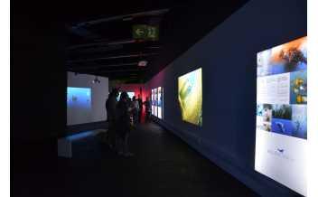 Oceans, the Last Wild Territory, Exhibition, Museu Blau, Barcelona: 3 November 2017-14 September 2018.