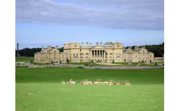Holkham Hall, Holkham, Wells-next-the-Sea, England