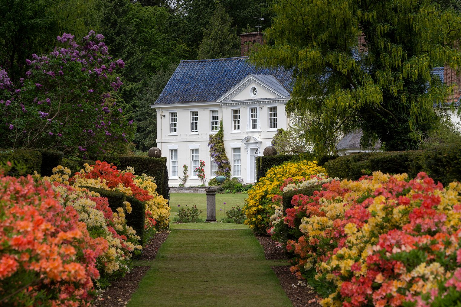 Stody Lodge Garden, Norfolk, England