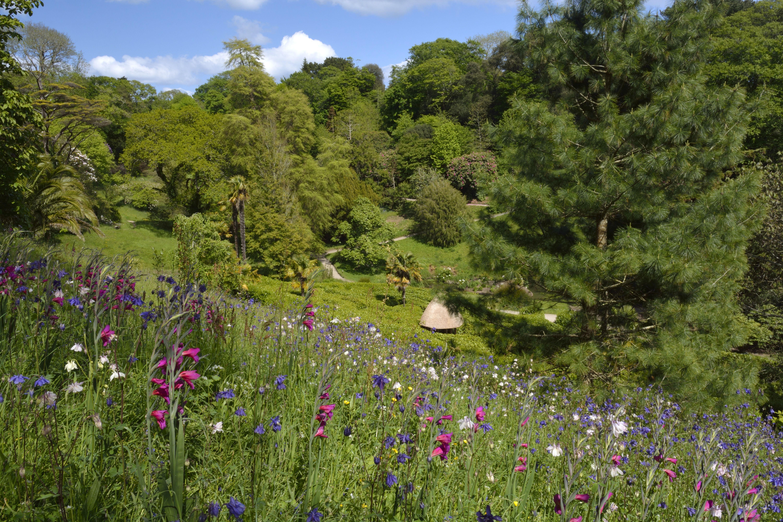 Glendurgan Garden, Cornwall, England