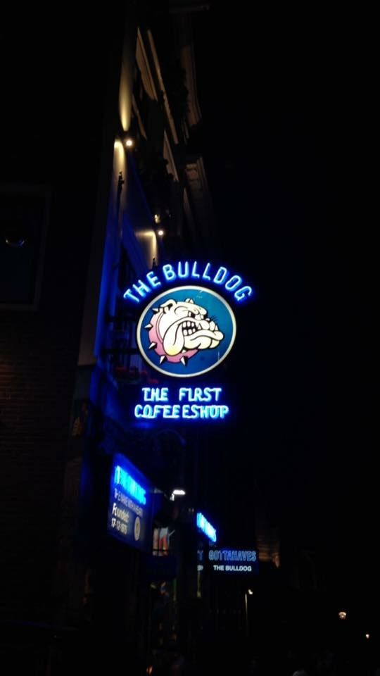 The Bulldog Cafe, Amsterdam: All year