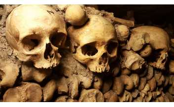 The Catacombes, Paris: All year