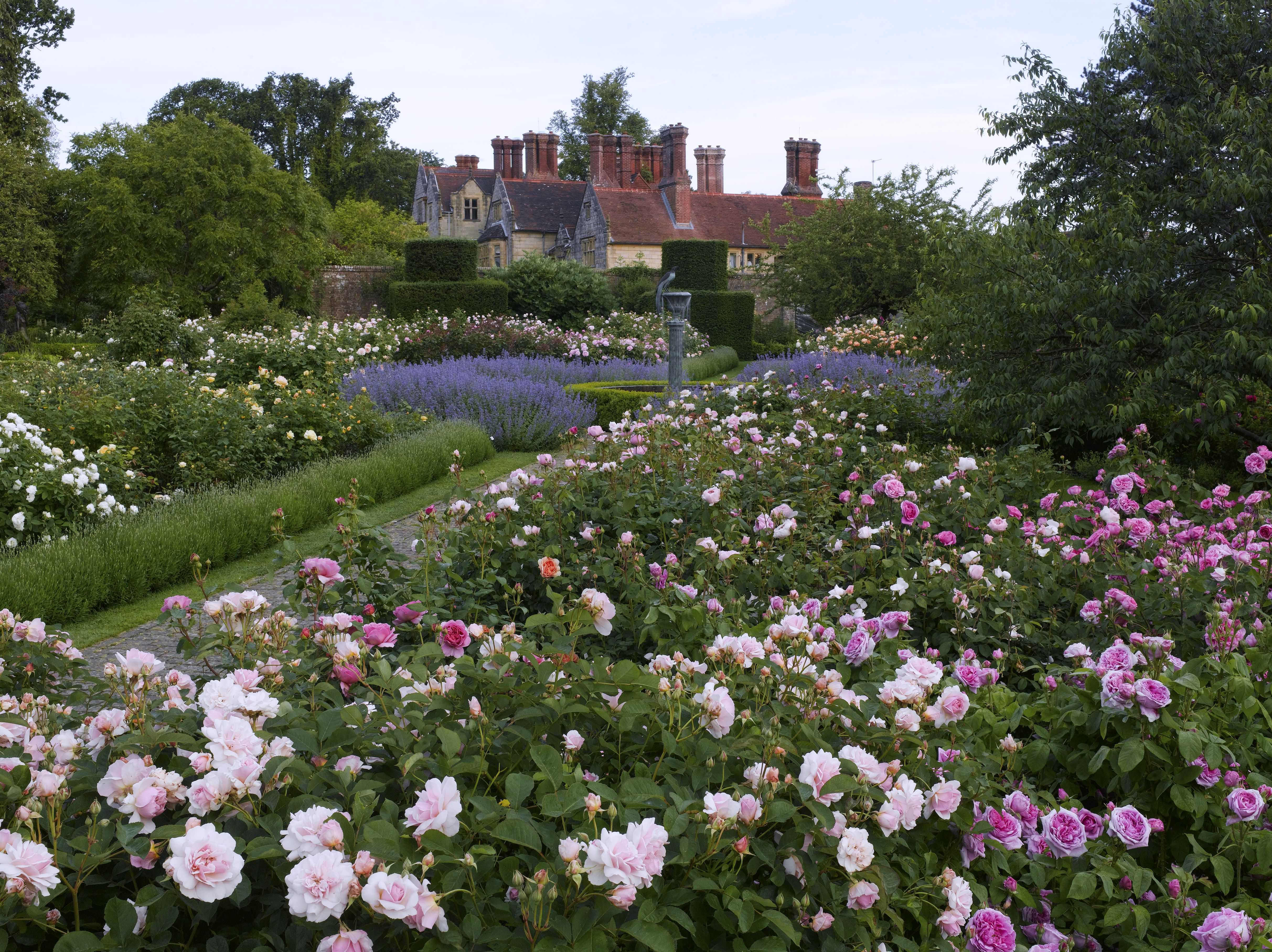 Borde Hill Garden, West Sussex, England