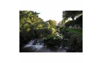 Morland House Gardens, Eden, Cumbria, England