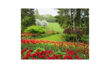 Pashley Manor Gardens, Ticehurst, East Sussex, England