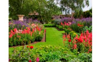 Claydon Gardens