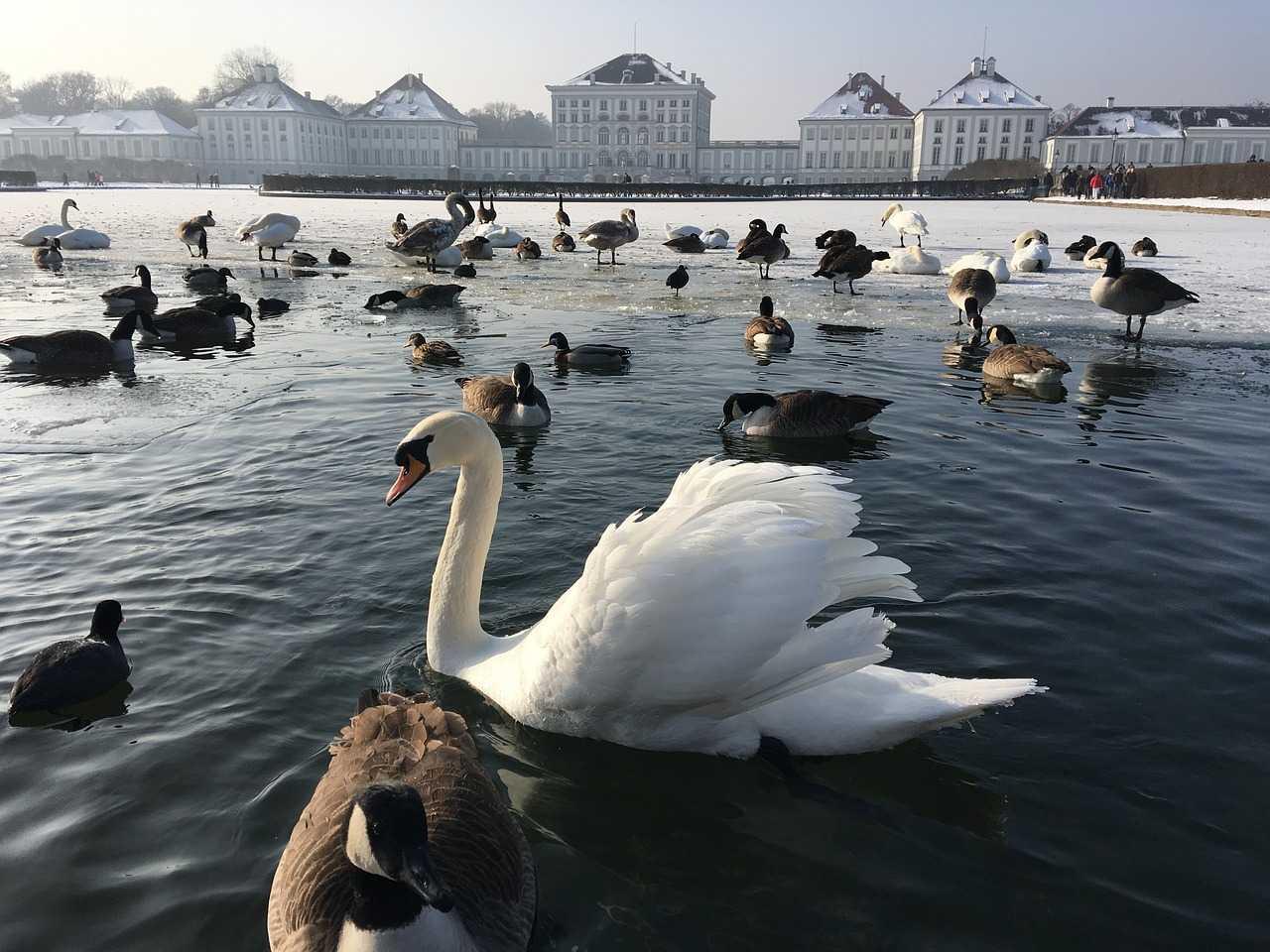 Nymphenburg Park, Munich