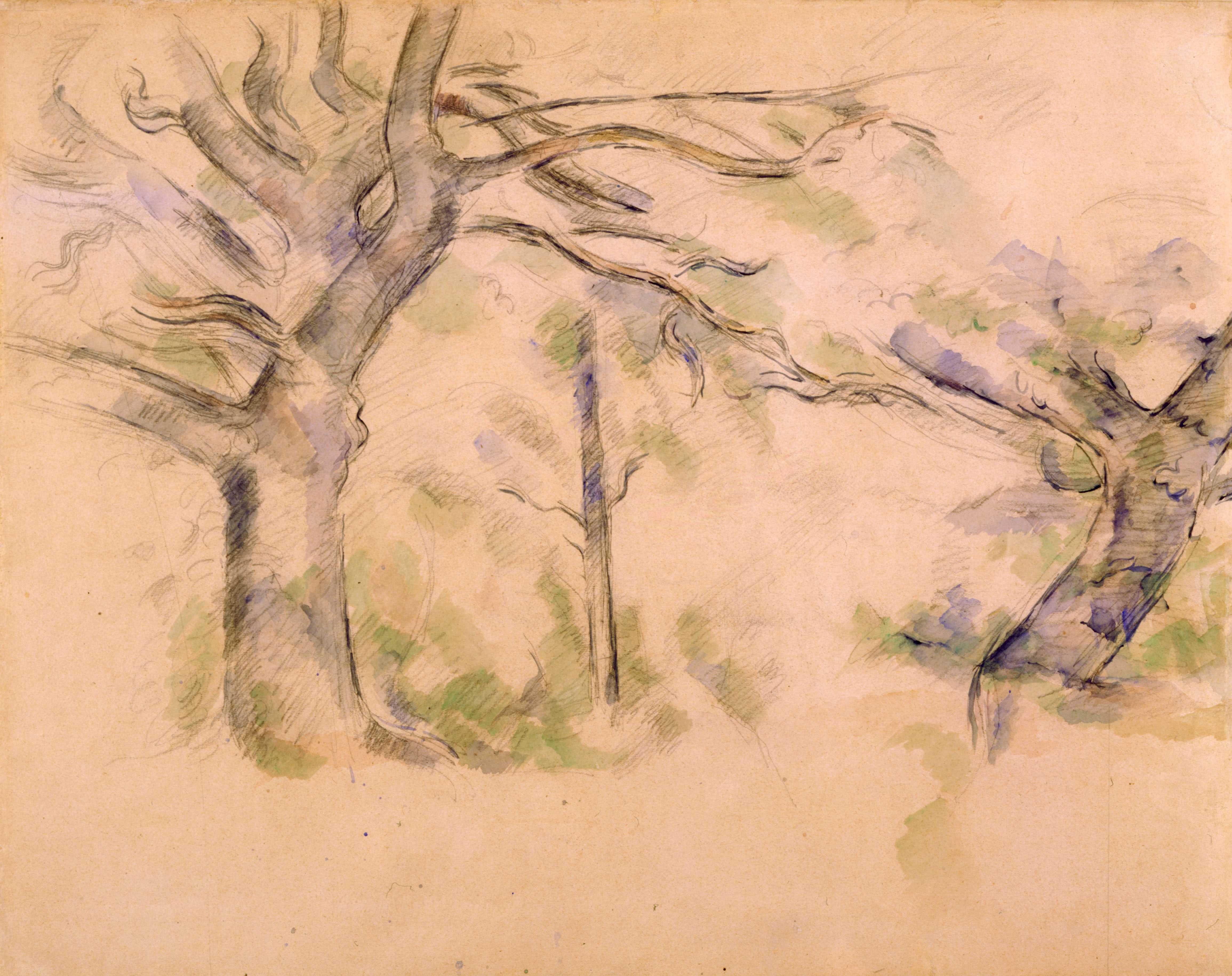Paul Cézanne, Les grands arbres, XIXe siècle. Aquarelle, graphite, 47 x 58 cm, Collection Prat.