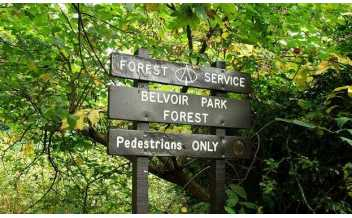 Belvoir Park Forest, Belfast