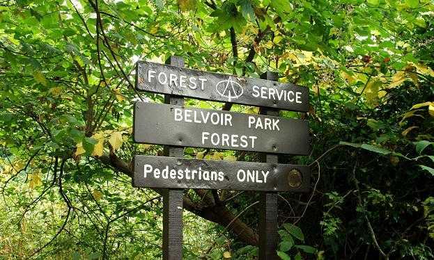 Belvoir Park Forest, Belfast