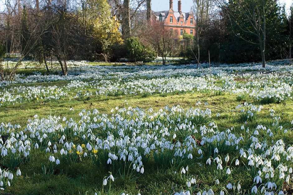 Chippenham Park Gardens, Newmarket
