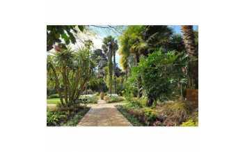 Abbotsbury Subtropical Gardens, Weymouth, Dorset