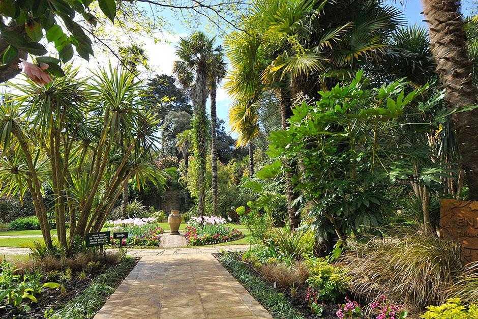 Abbotsbury Subtropical Gardens, Weymouth