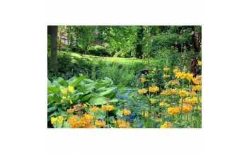 Melbourne Hall Gardens, Derbyshire, England