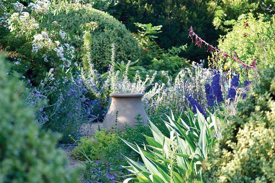 Denmans Garden, Fontwell, West Sussex