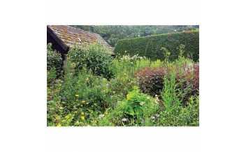 Bide-a-Wee Cottage Gardens, Netherwitton