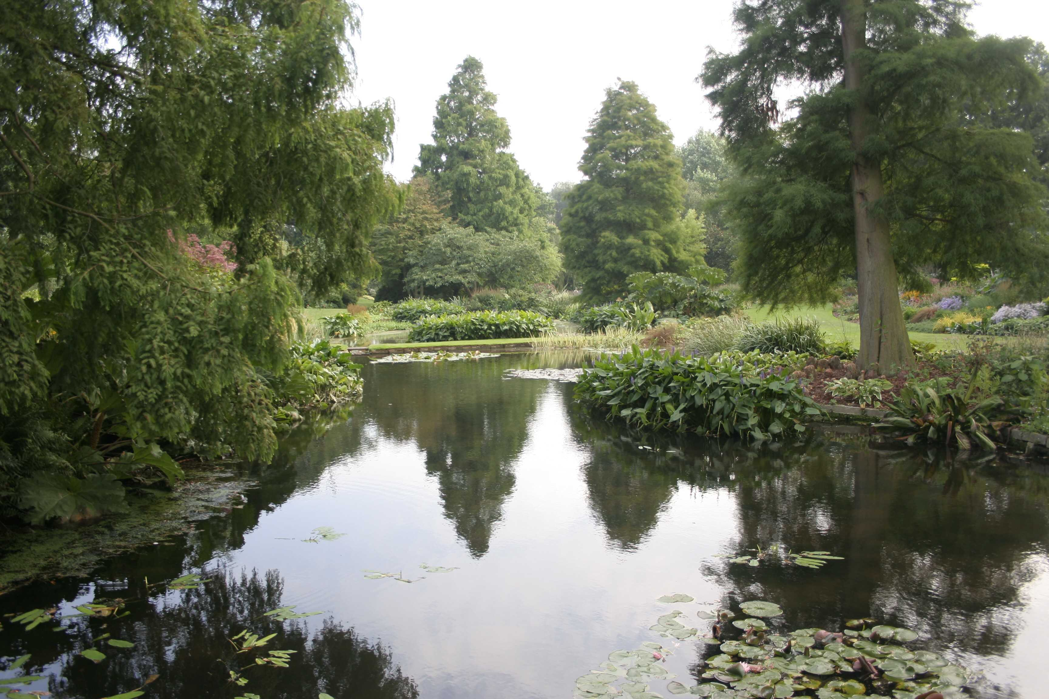 The Beth Chatto Gardens, Colchester