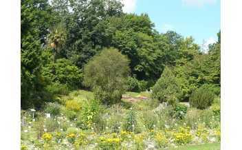 https://fr.wikipedia.org/wiki/Jardin_des_plantes_de_Caen#/media/Fichier:P1030229_le_jardin_des_plantes_a_Caen.JPG